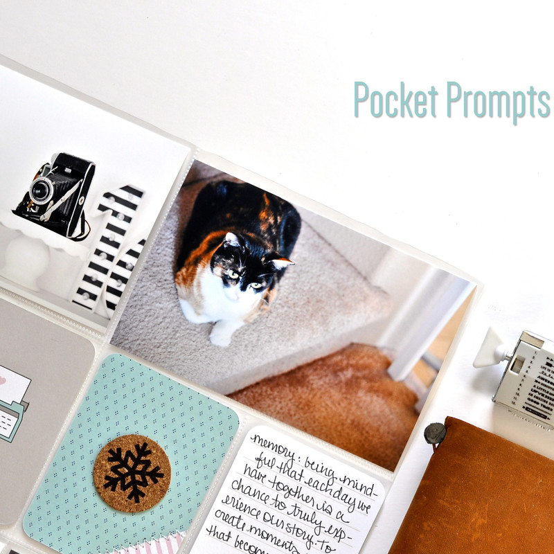 Pocketprompts24marketphoto