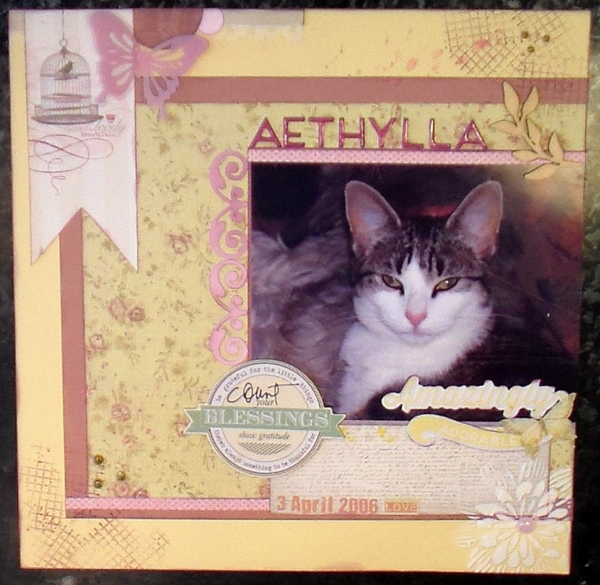 44   aethylla   split kit   lo  02 original